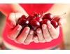 Sezona je sve bliže: 7 razloga da trešnje jedete što više